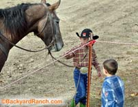 Kids getting a look at a ranch rodeo horse.